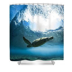 Pipe Turtle Glide Shower Curtain by Sean Davey