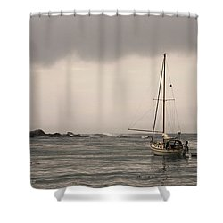 Play Misty For Me Shower Curtain by Donna Blackhall