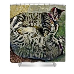 Playtime Shower Curtain by David G Paul