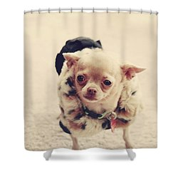 Please Meet Zoe Shower Curtain by Laurie Search