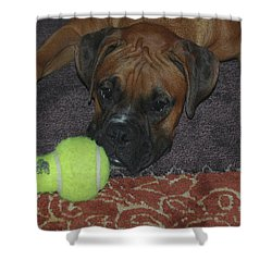Please Play With Me Shower Curtain by DigiArt Diaries by Vicky B Fuller