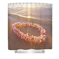Plumeria Lei Shoreline Shower Curtain by Mary Van de Ven - Printscapes