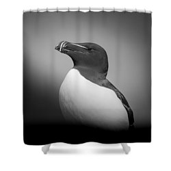 Poetry Shower Curtain by Roy Haakon Friskilae
