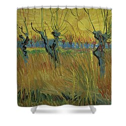 Pollarded Willows And Setting Sun Shower Curtain by Vincent Van Gogh
