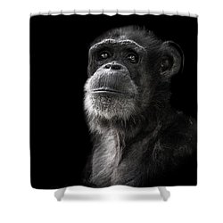 Ponder Shower Curtain by Paul Neville