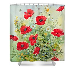 Poppies And Mayweed Shower Curtain by John Gubbins