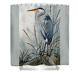 Portrait In The Wild Shower Curtain by James Williamson