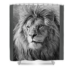 Portrait Of A Lion - Black And White Shower Curtain by Lucie Bilodeau