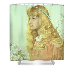 Portrait Of Miss Adele Donaldson, 1897 Shower Curtain by Anthony Frederick Augustus Sandys