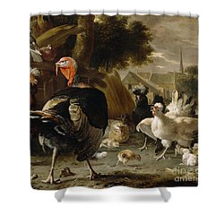 Poultry Yard Shower Curtain by Melchior de Hondecoeter