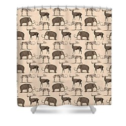 Prehistoric Animals Shower Curtain by Antique Images