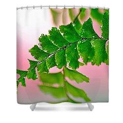Pretty Maiden Shower Curtain by Kaye Menner