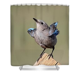 Pretty Pose Shower Curtain by Shane Bechler