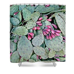 Prickly Pear Cactus Fruits Shower Curtain by Mother Nature