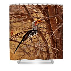 Prickly Perch 2 Shower Curtain by Stacie Gary