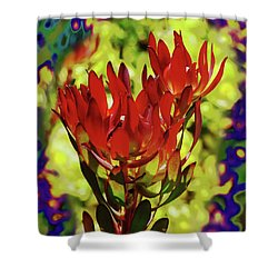 Protea Flower 4 Shower Curtain by Xueling Zou