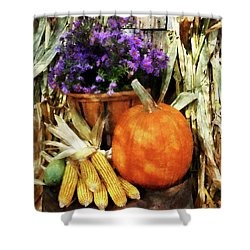 Pumpkin Corn And Asters Shower Curtain by Susan Savad