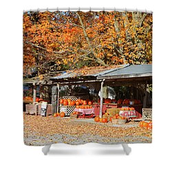 Pumpkins For Sale Shower Curtain by Louise Heusinkveld