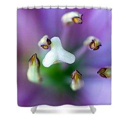 Purple Botanical Shower Curtain by Frank Tschakert