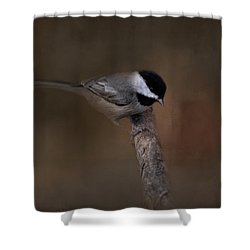 Quicksilver 2 Shower Curtain by Jai Johnson