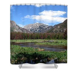 Quiet Shower Curtain by Amanda Barcon