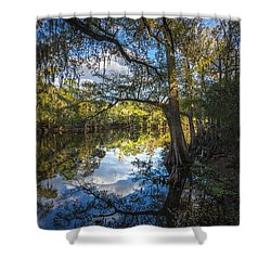 Quiet Embrace Shower Curtain by Marvin Spates