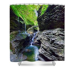 Shower Curtain featuring the photograph Rainbow Bridge And Falls by Rodney Campbell
