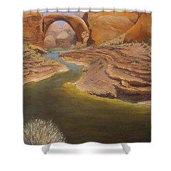 Rainbow Bridge Shower Curtain by Jerry McElroy