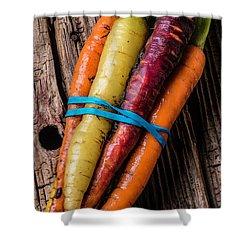 Rainbow Carrots Shower Curtain by Garry Gay