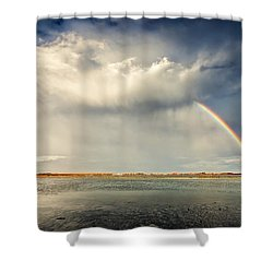 Rainbow Shower Curtain by Evgeni Dinev