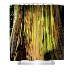 Rainbow Tree Shower Curtain by Jon Burch Photography
