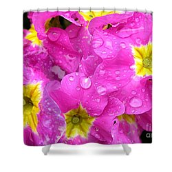 Raindrops On Pink Flowers 2 Shower Curtain by Carol Groenen