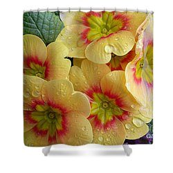 Raindrops On Yellow Flowers Shower Curtain by Carol Groenen
