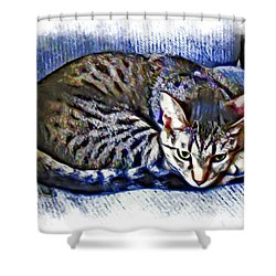 Ready For Napping Shower Curtain by David G Paul