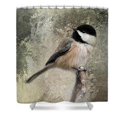 Ready For Spring Seeds Shower Curtain by Jai Johnson