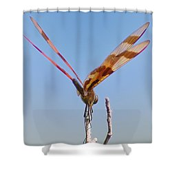Ready For Take Off Shower Curtain by Bill Cannon