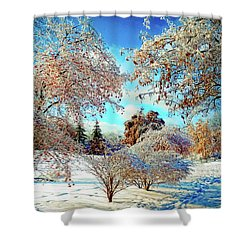 Shower Curtain featuring the photograph Realm Of The Ice Queen by Rodney Campbell
