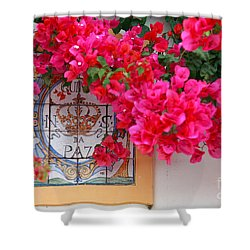 Red Bougainvilleas Shower Curtain by Gaspar Avila