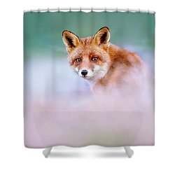 Red Fox In A Mysterious World Shower Curtain by Roeselien Raimond