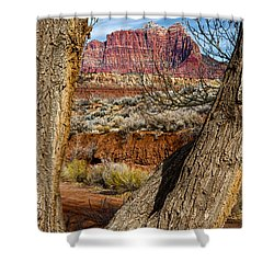 Red In The Distance Shower Curtain by Christopher Holmes