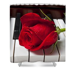 Red Rose On Piano Keys Shower Curtain by Garry Gay