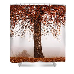 Red Tree Shower Curtain by Evgeni Dinev