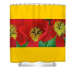 Red Tulip Trio Shower Curtain by Ben and Raisa Gertsberg