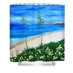 Redondo Beach Shower Curtain by Jamie Frier
