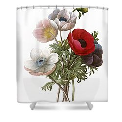 Redoute: Anemone, 1833 Shower Curtain by Granger