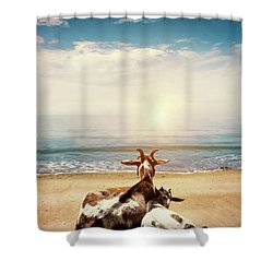 Remember This Day Shower Curtain by Wim Lanclus