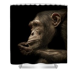 Reminisce Shower Curtain by Paul Neville