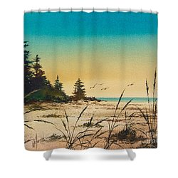 Return To The Shore Shower Curtain by James Williamson