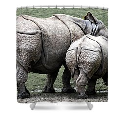 Rhinoceros Mother And Calf In Wild Shower Curtain by Daniel Hagerman