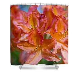 Rhododendron Flowers Shower Curtain by Frank Tschakert